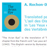 The Avian Eye website